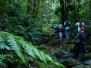 Ultima Caminata 2012